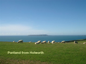 portland from holworth